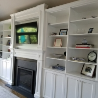 Built in Cabinets and Gas Fireplace